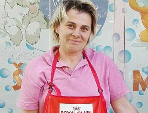 Elizabeta Petrović – Frizer za pse